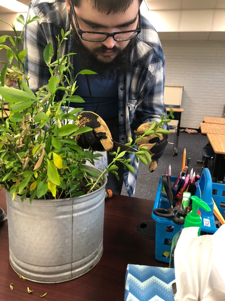 Horticulture_Planting w-Joshua_2018-10 (1)